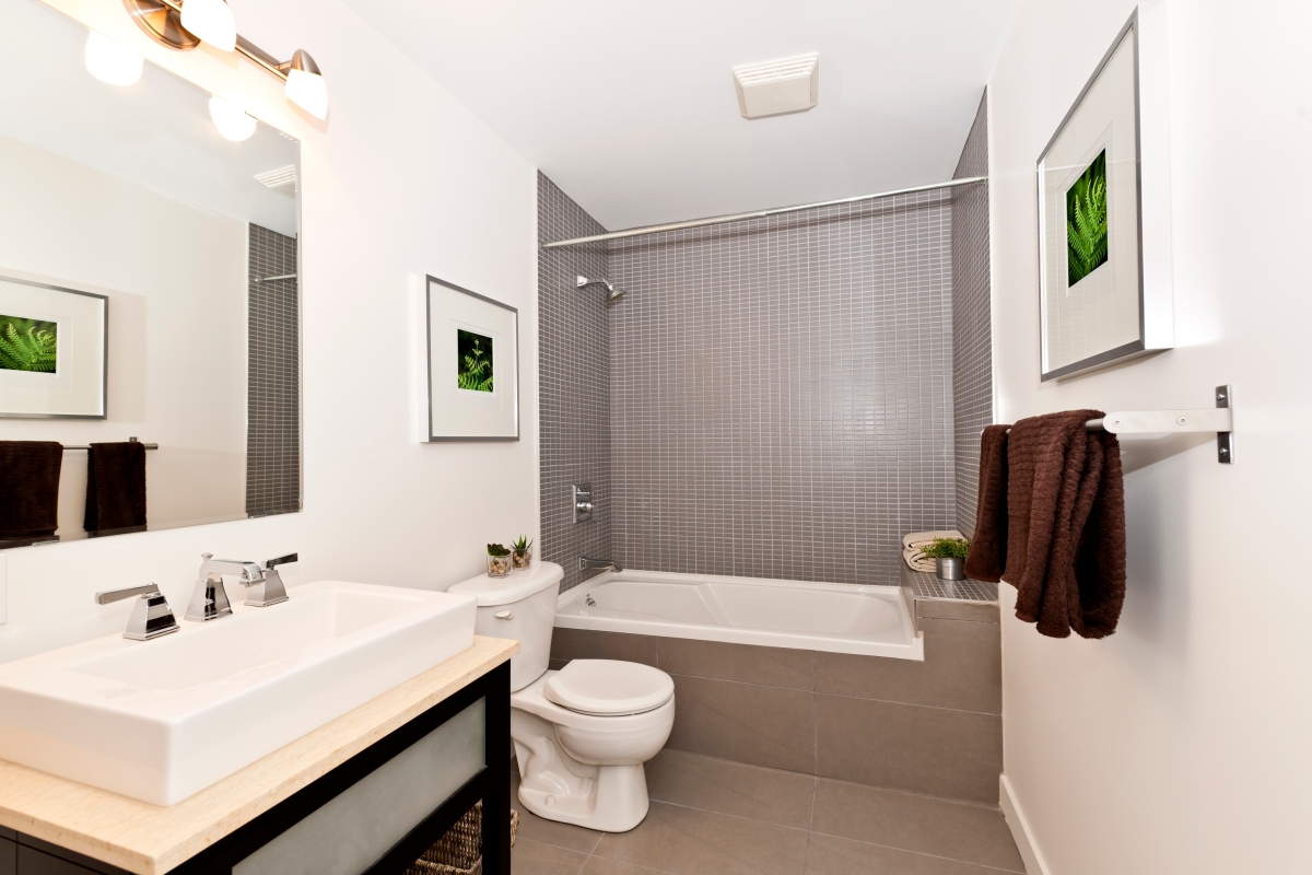 Germs and Bacteria in your Bathroom - Southern Comfort ...